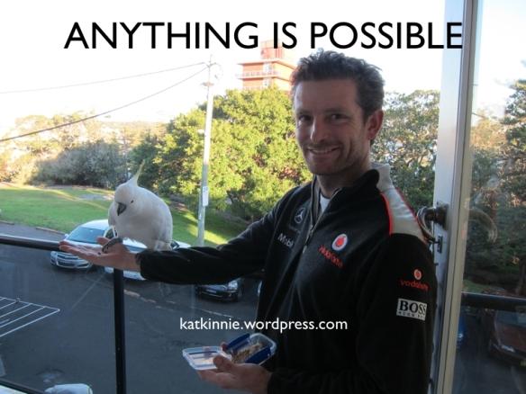 Anything3